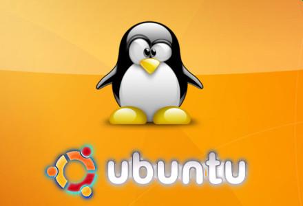 ubuntu_904.jpg