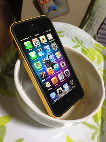 Iphone dish