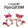 悩ましい高速通信サービス LTE 対応 2GB 制限プラン PairGB SIM